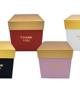 Cutii carton 3-25