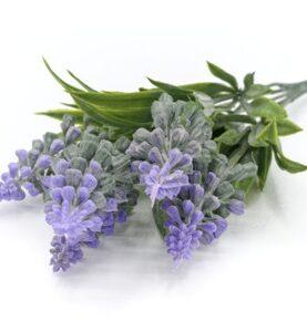 Flori artificiale - lavanda 31-1